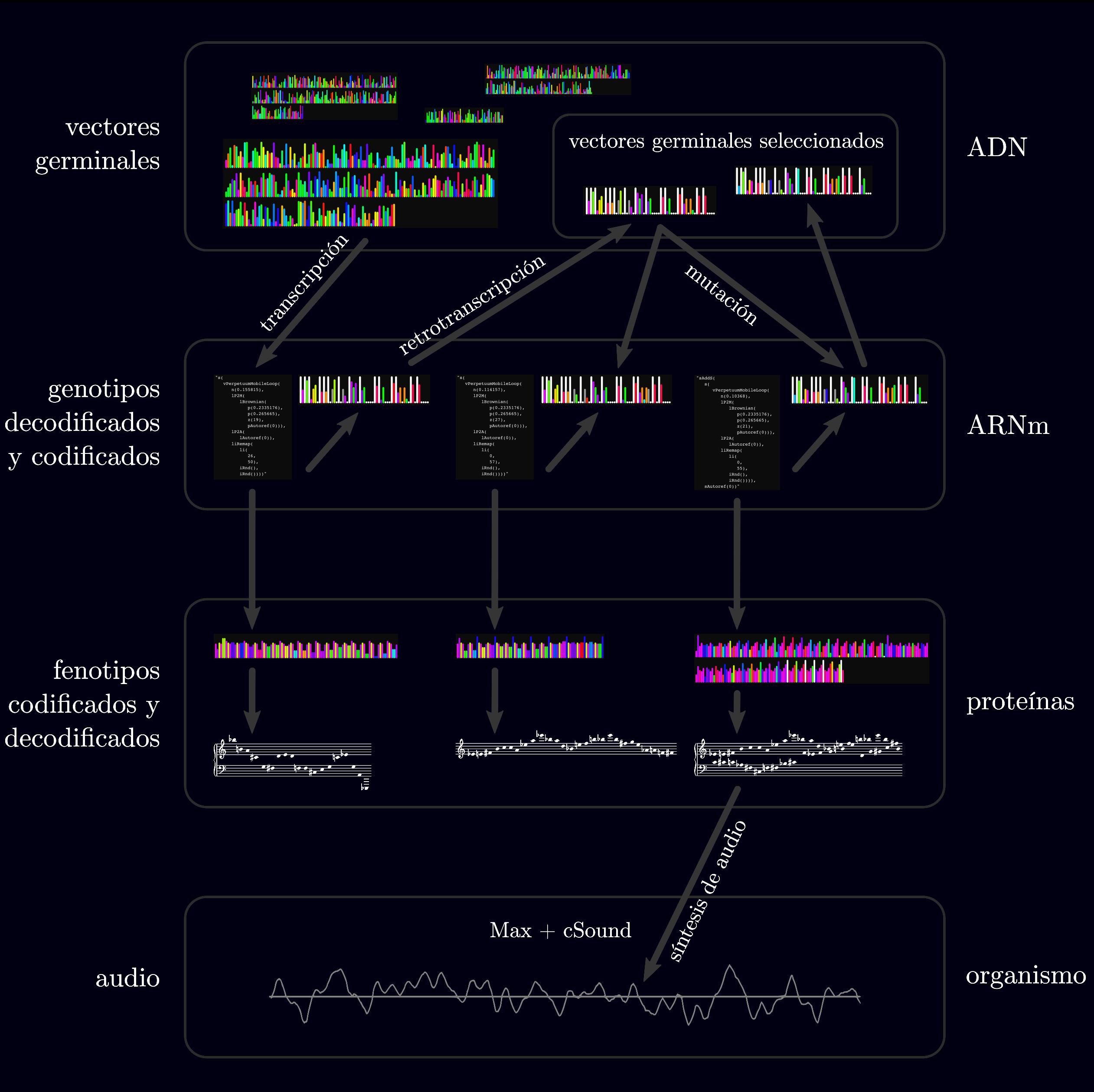 Figura con la estructura de datos de GenoMus